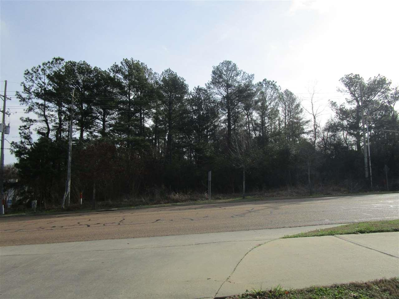 00 Old Canton Rd - Photo 1