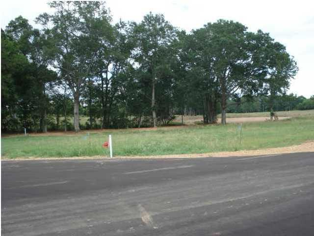 3 Southern Trace Blvd, Clinton, MS 39056 (MLS #293827) :: RE/MAX Alliance