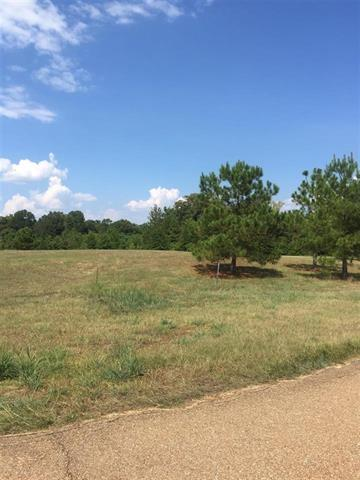 Lot 9 East Lake Cv Lot 9, Jackson, MS 39211 (MLS #301515) :: Mississippi United Realty