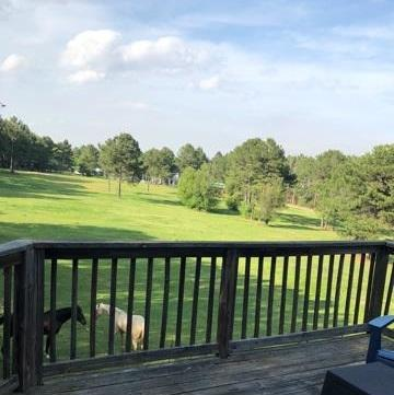 212 Lakeshire Pkwy #0, Canton, MS 39046 (MLS #306912) :: Three Rivers Real Estate