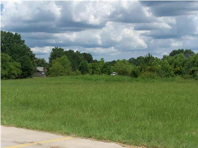 123 Highway 51, Madison, MS 39110 (MLS #309825) :: RE/MAX Alliance