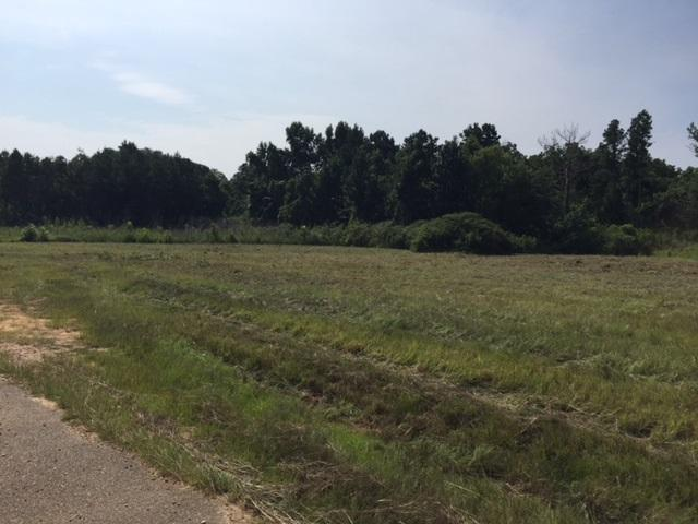 0000 Phyllis Ann Dr, Crystal Springs, MS 39059 (MLS #311437) :: RE/MAX Alliance