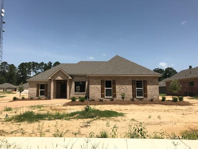 533 Brighton Trl, Florence, MS 39073 (MLS #311991) :: RE/MAX Alliance