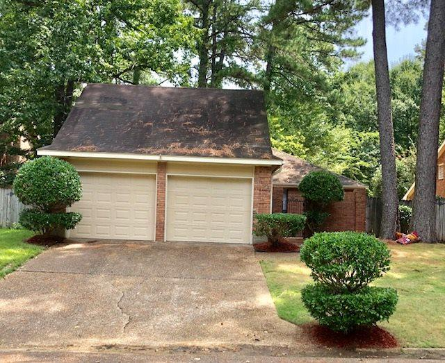 138 Brookleigh Pl, Jackson, MS 39272 (MLS #312178) :: RE/MAX Alliance