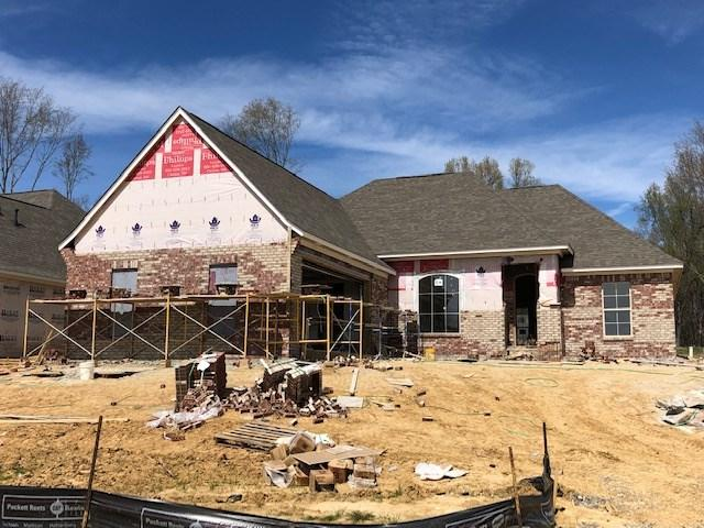 132 Shore View Dr, Madison, MS 39110 (MLS #317842) :: RE/MAX Alliance