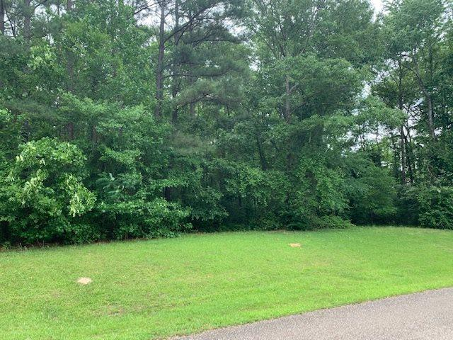Magnolia Springs, Florence, MS 39073 (MLS #319809) :: RE/MAX Alliance