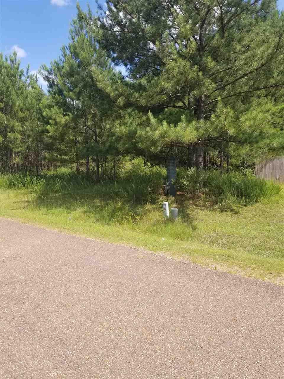 0 Magnolia Bluff - Photo 1