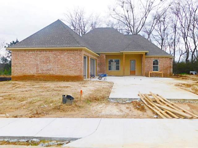 192 Catherine Blvd, Clinton, MS 39056 (MLS #327046) :: RE/MAX Alliance