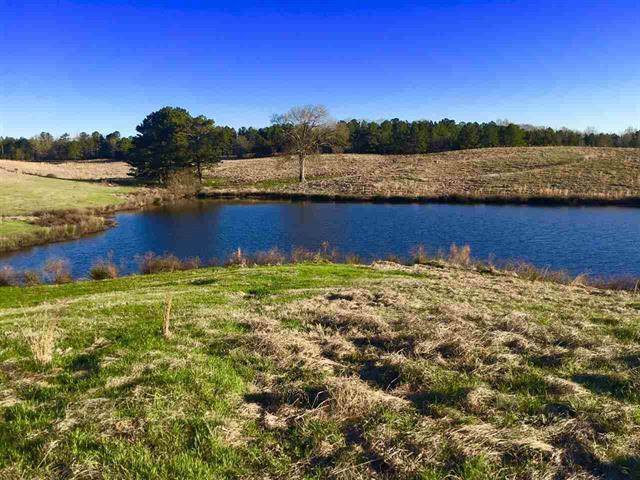 001 NE Bowling Green Rd, Durant, MS 39063 (MLS #327595) :: RE/MAX Alliance