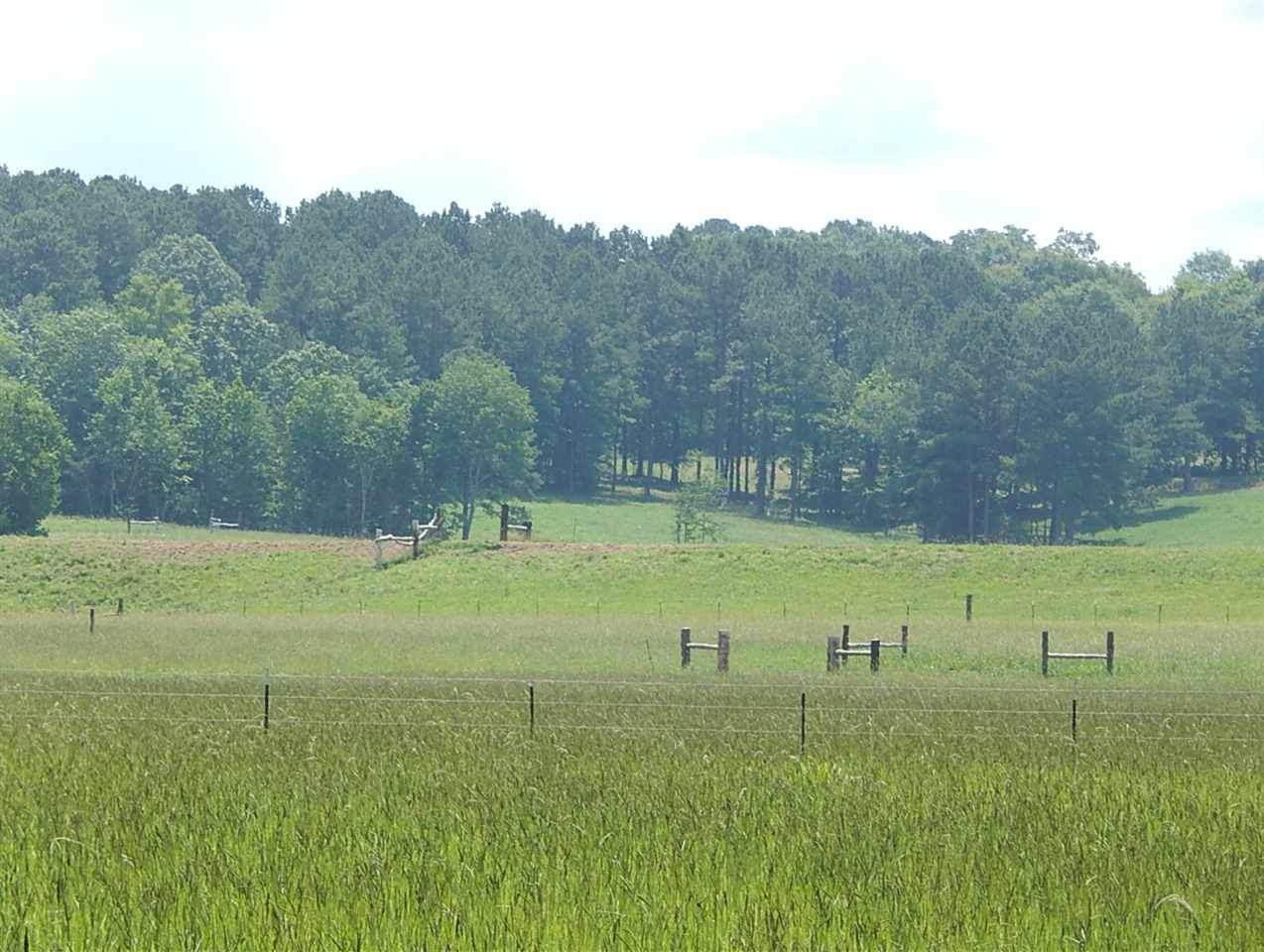 324 County Rd 164 - Photo 1