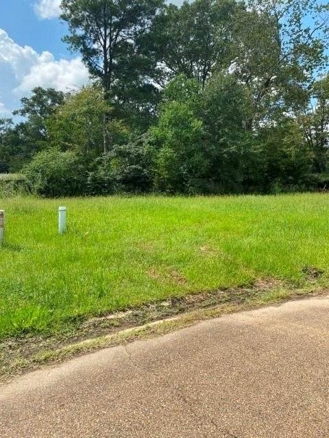 David Cv Lot 22, Pearl, MS 39208 (MLS #334563) :: Mississippi United Realty