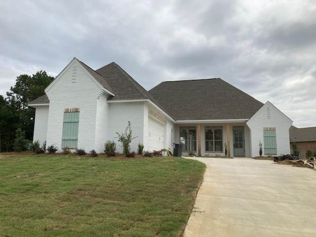 142 Camden Point, Madison, MS 39110 (MLS #334603) :: List For Less MS