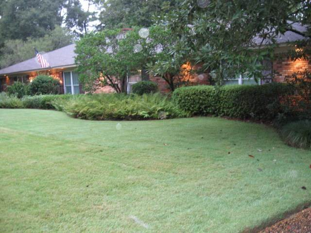 5350 River Thames Rd, Jackson, MS 39211 (MLS #334879) :: Mississippi United Realty