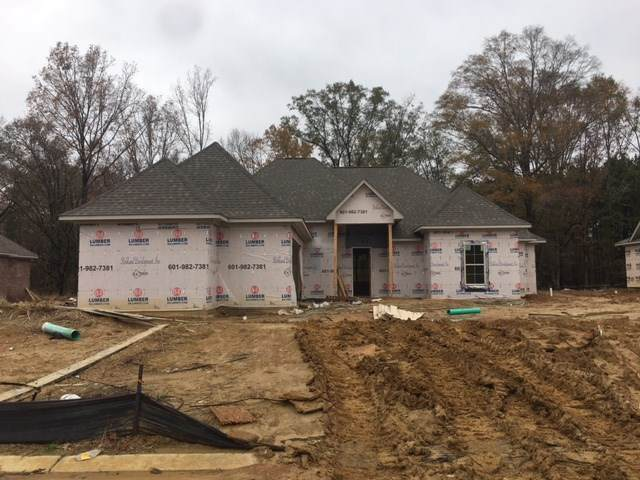 136 Catherine, Clinton, MS 39056 (MLS #336820) :: eXp Realty