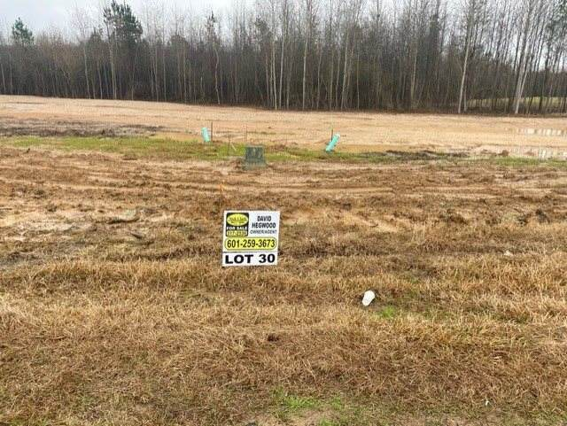 Kennedy Farms Parkway Lot 30, Brandon, MS 39042 (MLS #337933) :: eXp Realty