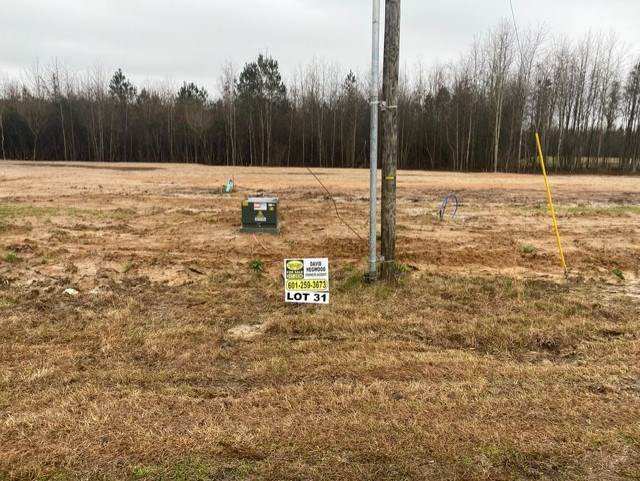 Kennedy Farms Parkway Lot 31, Brandon, MS 39042 (MLS #337940) :: eXp Realty