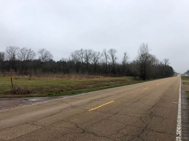 Highway 35 South, Forest, MS 39074 (MLS #338057) :: eXp Realty