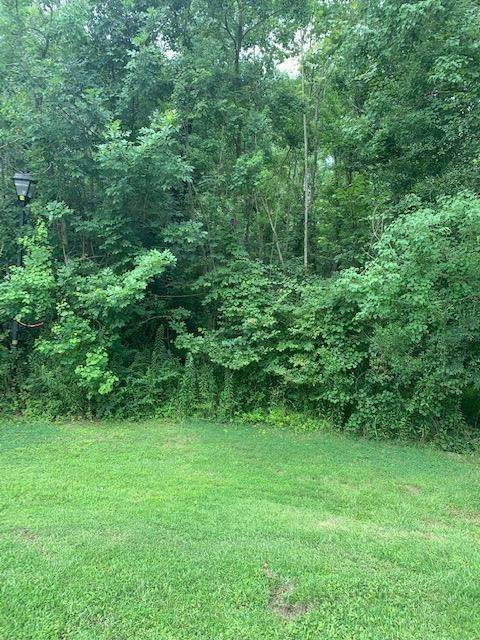 3 Wildwood Dr #3, Madison, MS 39110 (MLS #342382) :: eXp Realty