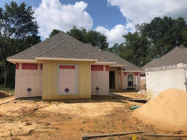 254 Buttonwood Lane, Canton, MS 39046 (MLS #342643) :: eXp Realty