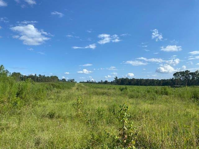 16 SECTION RD, Mendenhall, MS 39114 (MLS #343679) :: eXp Realty