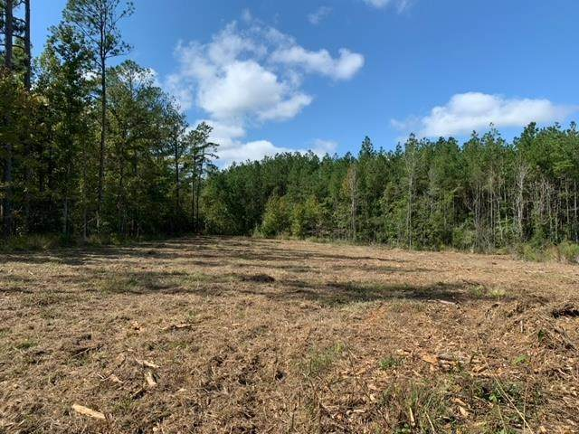 TRACT 4 Coal Bluff Rd #4, Brandon, MS 39094 (MLS #344925) :: eXp Realty