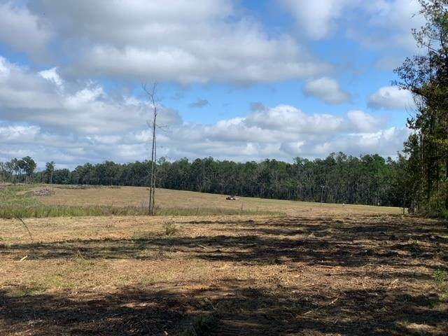 TRACT 6 Coal Bluff Rd #6, Brandon, MS 39094 (MLS #344932) :: eXp Realty