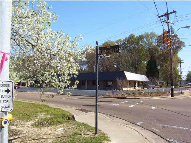 100 N Bierdeman Rd, Pearl, MS 39208 (MLS #162449) :: RE/MAX Alliance