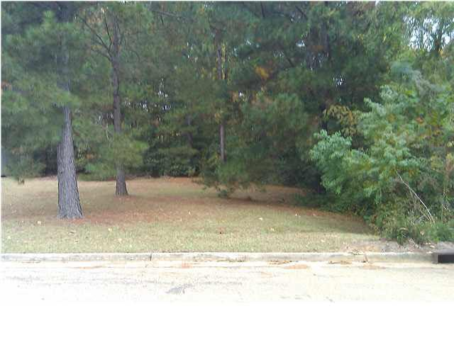 0 Watersview St Lot 13, Jackson, MS 39212 (MLS #184404) :: Mississippi United Realty