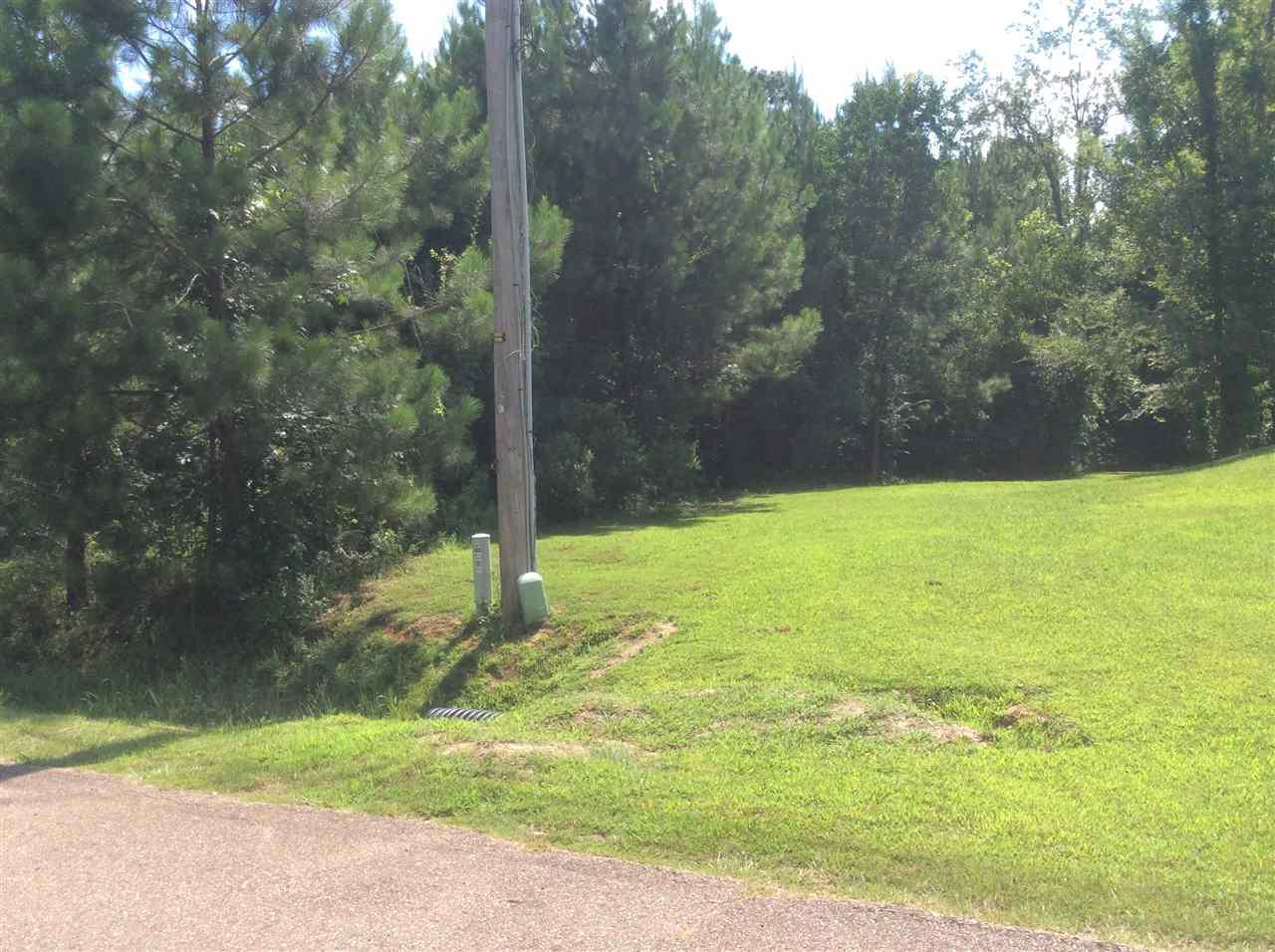 737 Forest Woods Dr - Photo 1