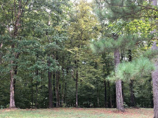 Little Creek Rd #68, Flowood, MS 39232 (MLS #312184) :: RE/MAX Alliance