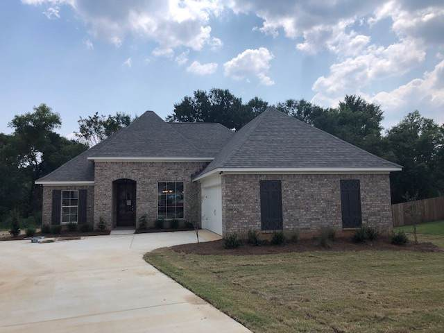 312 Candlewood Ct, Canton, MS 39046 (MLS #322662) :: RE/MAX Alliance