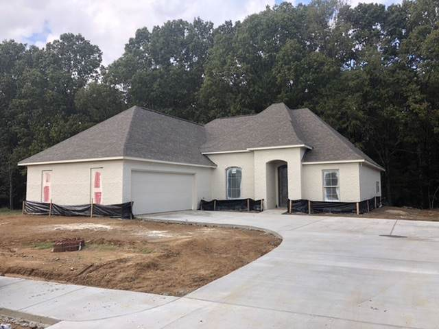 152 Shore View Dr, Madison, MS 39110 (MLS #324990) :: RE/MAX Alliance