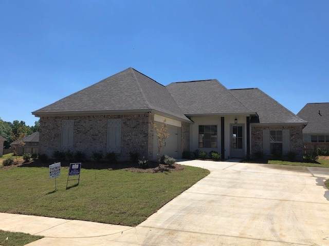 317 Buttonwood Dr, Canton, MS 39046 (MLS #328932) :: Three Rivers Real Estate