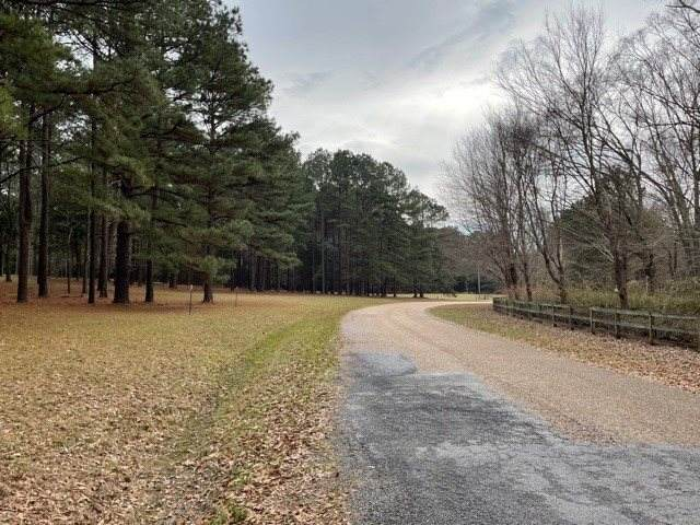 298 Highland Meadow Rd #2, Flora, MS 39071 (MLS #333112) :: eXp Realty