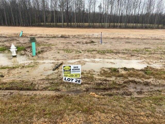 Kennedy Farms Parkway Lot 28, Brandon, MS 39042 (MLS #337931) :: eXp Realty