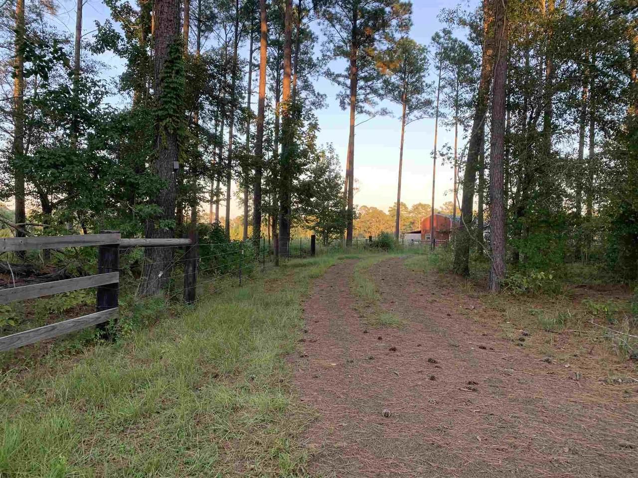 430 County Road 2153 - Photo 1