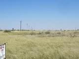 Gaines County Crp, 78.82 Acres - Photo 1