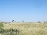 Gaines County Crp 165.3 Acres - Photo 2