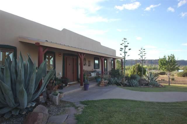 201 Victorio Trail, Fort Davis, TX 79734 (MLS #201368) :: Triangle Real Estate