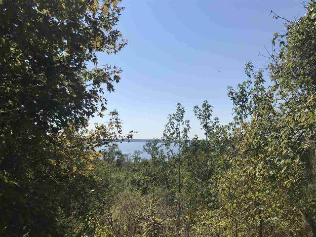 TBD Cr 482, Etoile, TX 75944 (MLS #201557) :: Triangle Real Estate