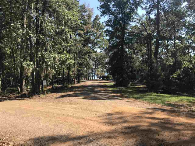 TBD Cr 482, Etoile, TX 75944 (MLS #201559) :: Triangle Real Estate