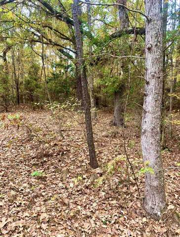 TBD Beech Dr, Broaddus, TX 75929 (MLS #201995) :: Triangle Real Estate