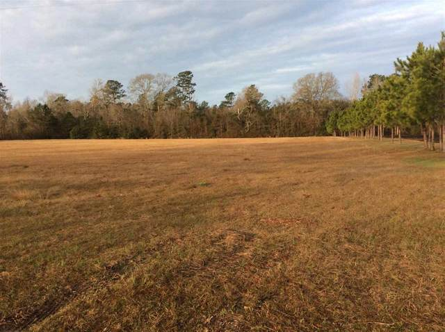 1787 County Road 480, Kirbyville, TX 75956 (MLS #202113) :: Triangle Real Estate