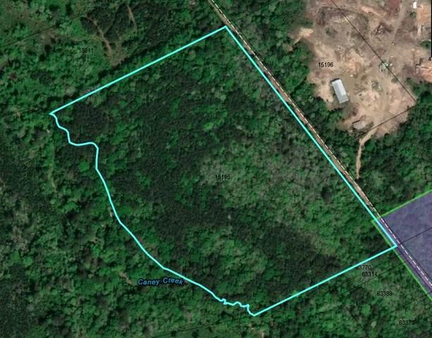 000 Cr 1001, Newton, TX 75966 (MLS #202214) :: Triangle Real Estate