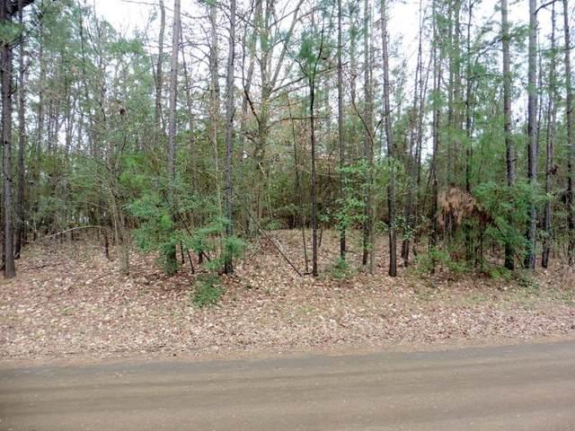 0 Lakeland Cir, Hemphill, TX 75948 (MLS #202293) :: Triangle Real Estate