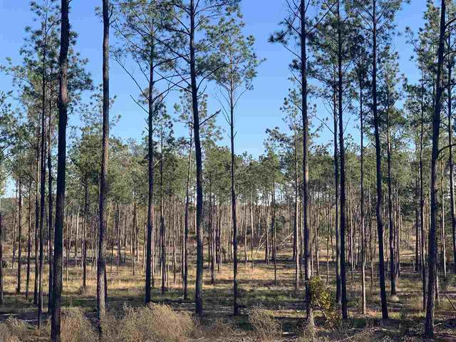 Tract 1-67 Private Road 6026, Brookeland, TX 75931 (MLS #202345) :: Triangle Real Estate