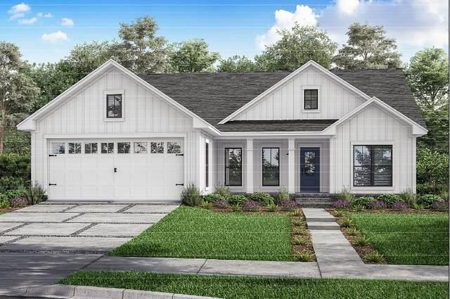 659 Shoreline, Brookeland, TX 75931 (MLS #202585) :: Triangle Real Estate