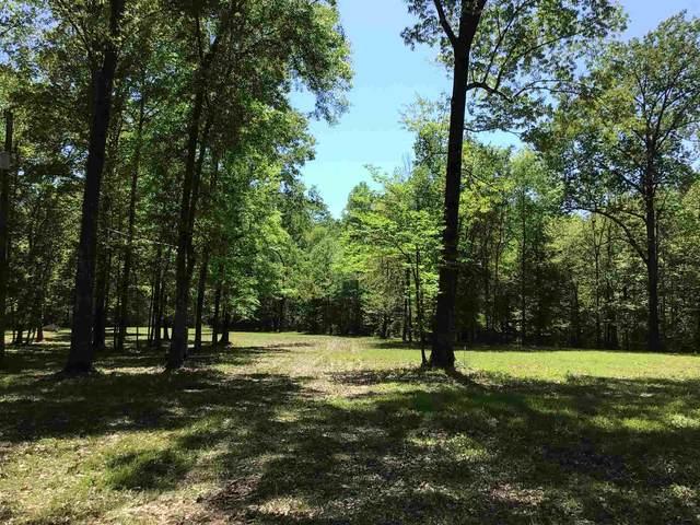 TBD Cr 490, Broaddus, TX 75929 (MLS #202596) :: Triangle Real Estate