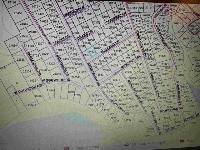 TBD-Lot 08 Mallard Dr, Trinity, TX 75862 (MLS #202992) :: Triangle Real Estate