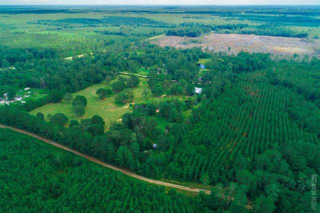 330 County Road 4412, Spurger, TX 77660 (MLS #203195) :: Triangle Real Estate